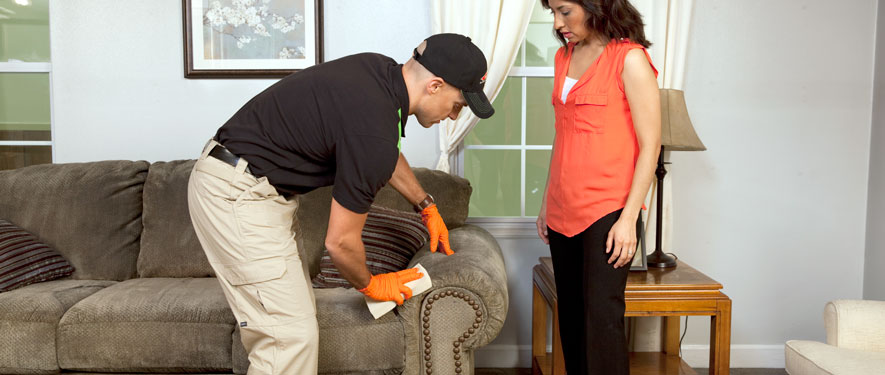 Valdosta, GA carpet upholstery cleaning